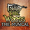 Into the Woods - The Musical