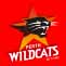 2019 Perth Wildcats NBL Finals