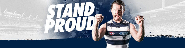 2019 Geelong Home Season